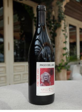 Pago del Ama Pinot Noir 2013